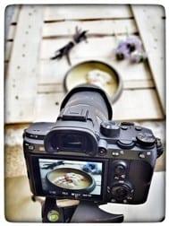 צילום של אי צף - נועה דניס שפית פרטית